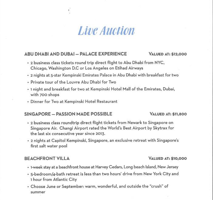 HCUND | Ambassador's Ball - Live Auction